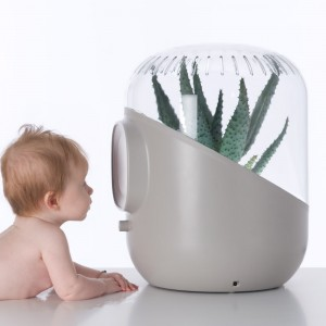 Andrea Air Filters: Plant Based Air Purification System