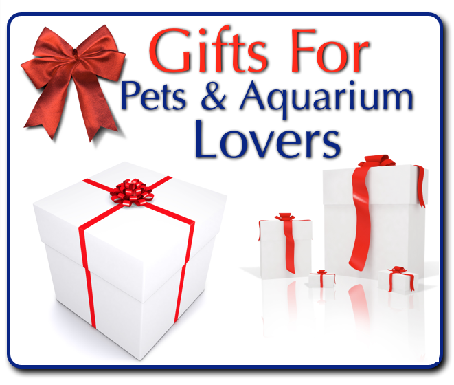 Gifts-for-dogs-cats-aquarium